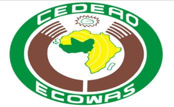 ECOWAS IT Assistant