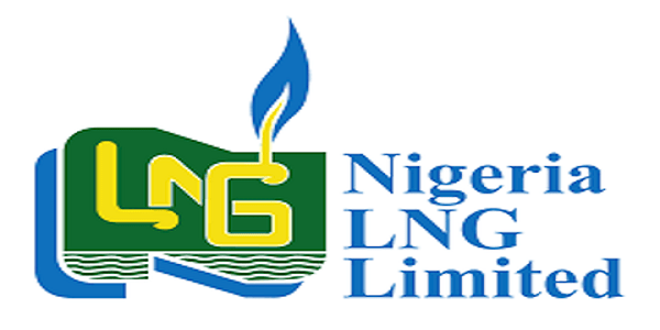 NLNG Undergraduate Scholarship