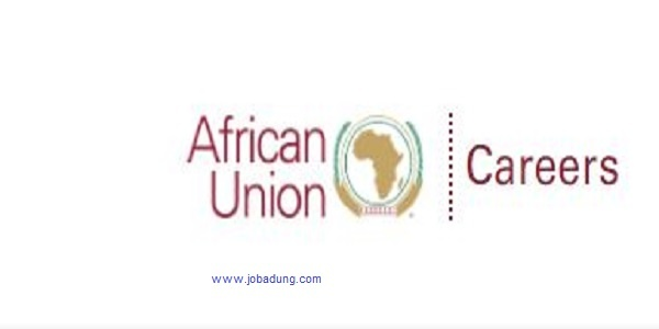Africa Union Commission Jobs